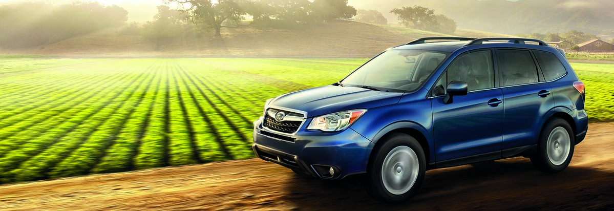 10 Most Por Cars With Consumer Reports Readers