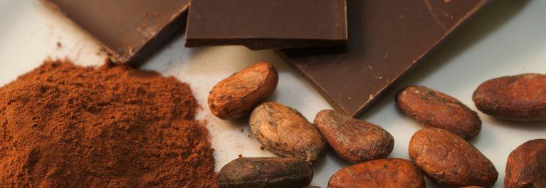 Chocolate bars, cocoa powder, and cocoa beans. Cocoa ETFs are expensive