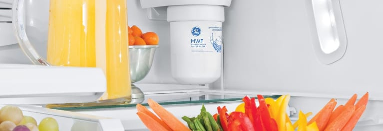 A refrigerator filter that needs changing twice per year