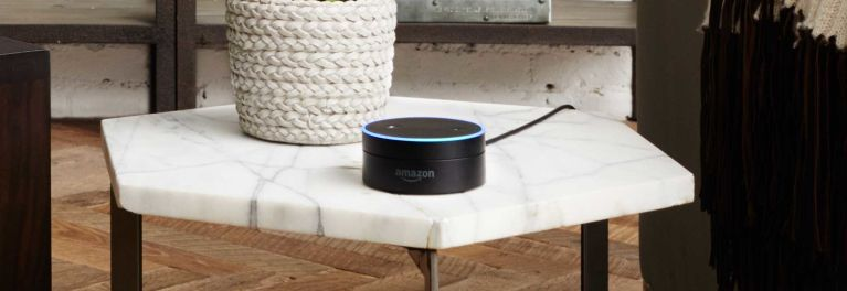 Amazon Echo and Dot (shown in a kitchen) have large appeal for users with disabilities