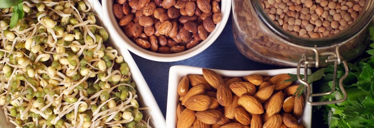 Bean sprouts, almonds, beans, and lentils. These are important for a healthy vegetarian diet.