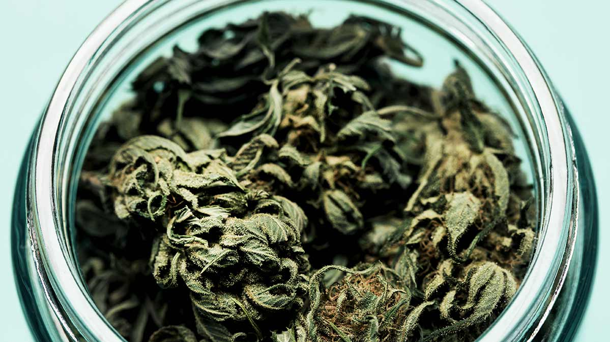 Car Crashes Up In States With Legal Marijuana Consumer