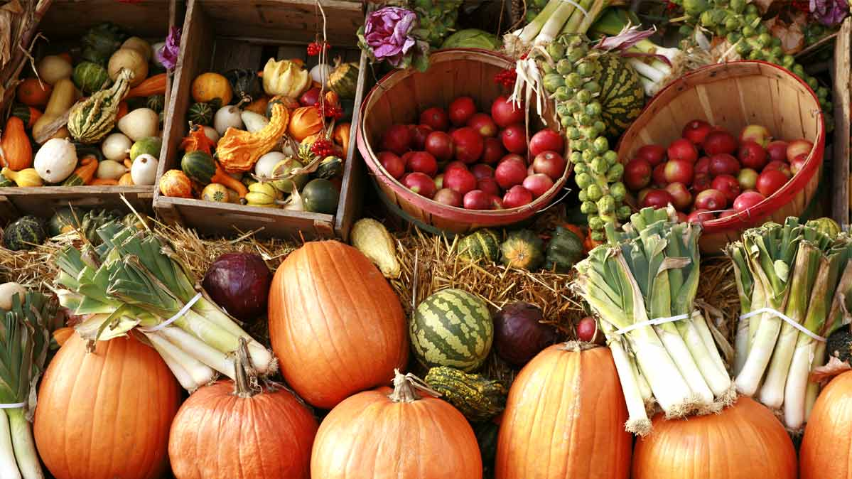 A farm stand array of fall fruits and vegetables.