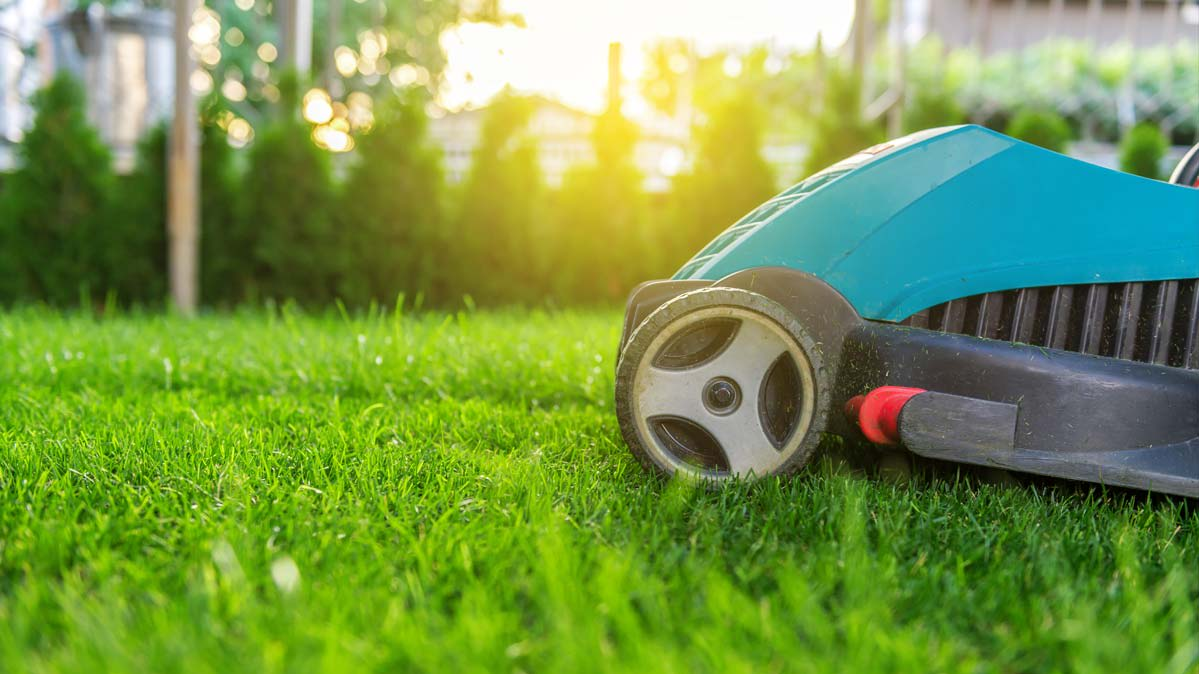 How Green Are Electric Lawn Mowers? - Consumer Reports