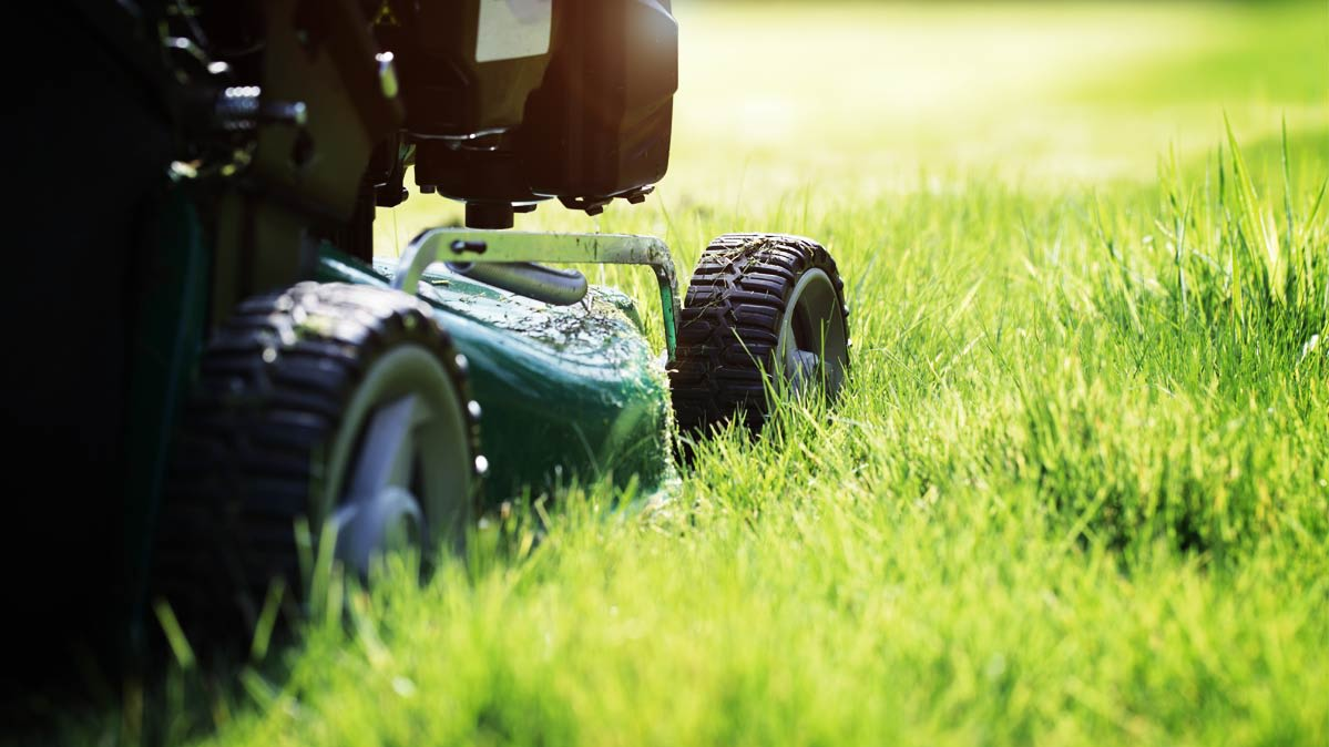 Best Lawn Mowers for Big Yards - Consumer Reports
