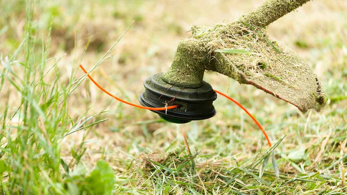 Closeup photo of a string trimmer a few inches off the ground.