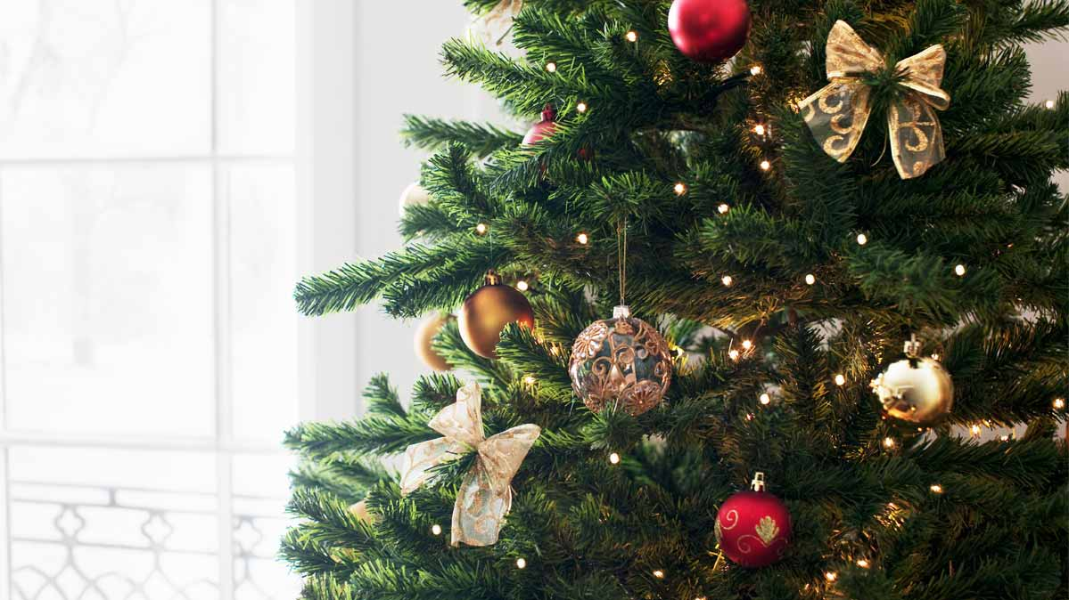 Christmas Tree Shortage.Christmas Tree Shortage Pushes Up Prices Consumer Reports
