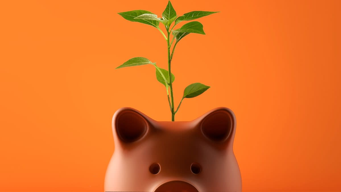 A piggy bank with a money tree growing out of it