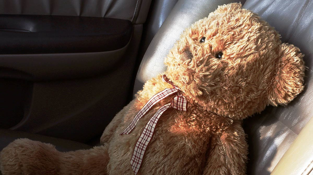Hot car with teddy bear
