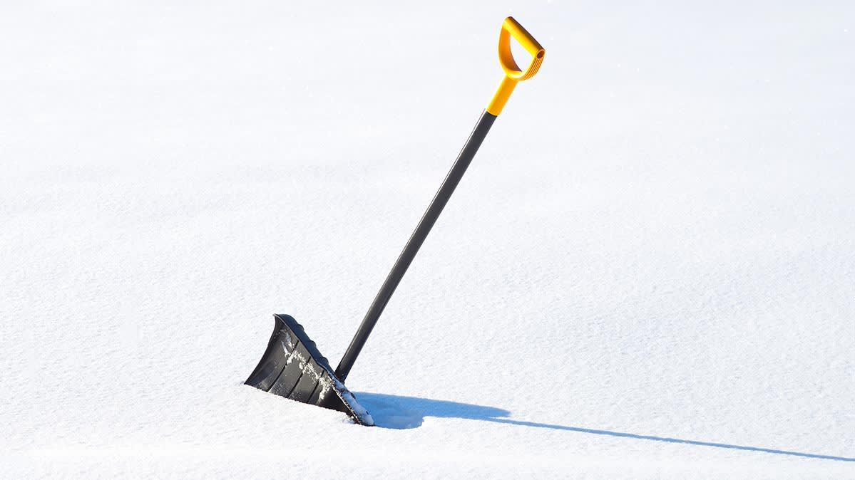 A snow shovel rests upright, half-dug into a bank of snow.
