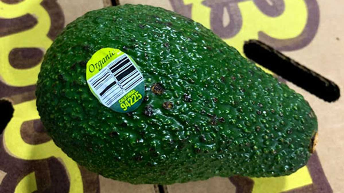 An image of the sticker on a recalled avocado.
