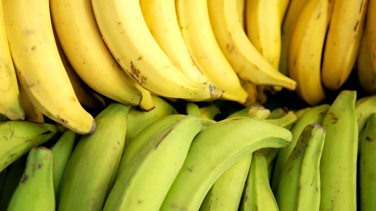 Son los plátanos machos buenos para ti? - Consumer Reports
