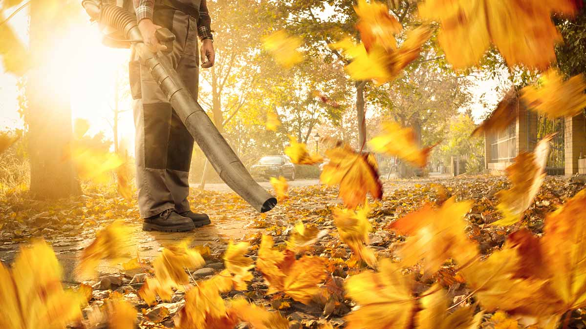 Quietest Leaf Blowers Outdoor Power Gear