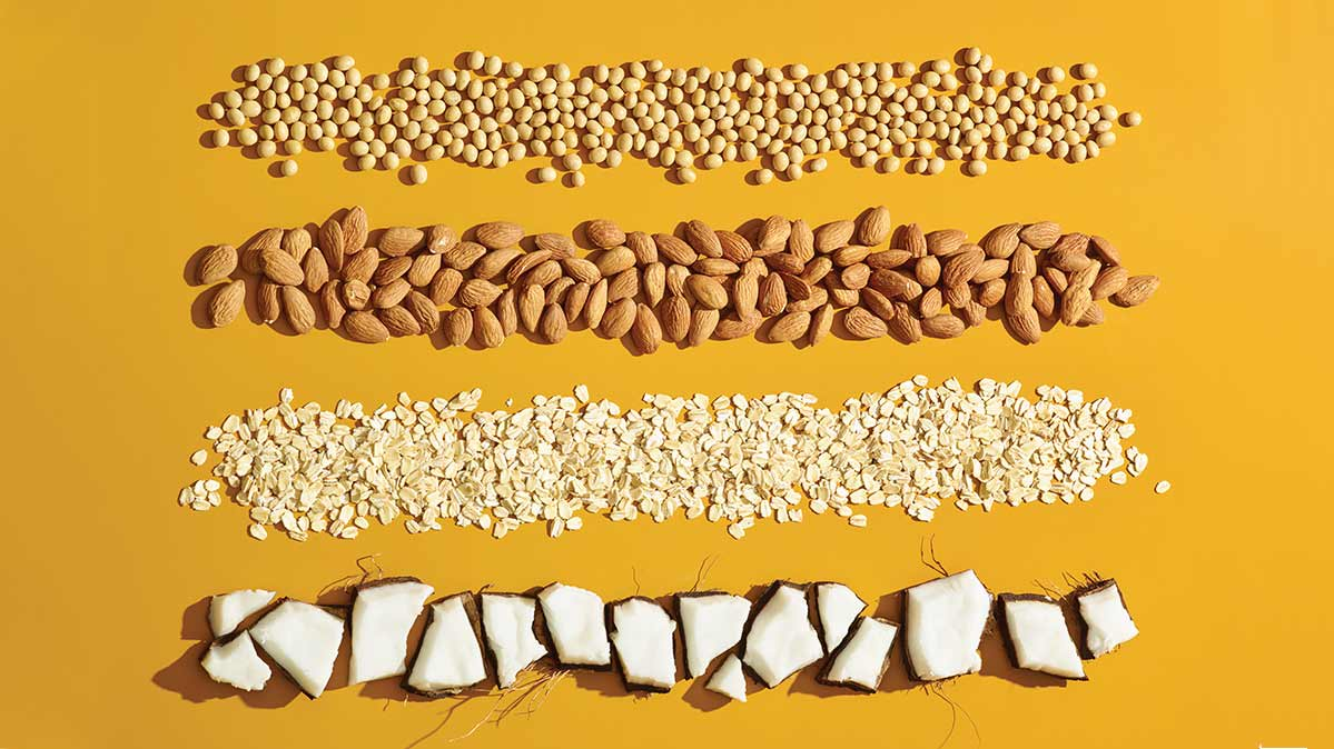Soy beans, almonds, oats, and coconut, from which plant milks can be made