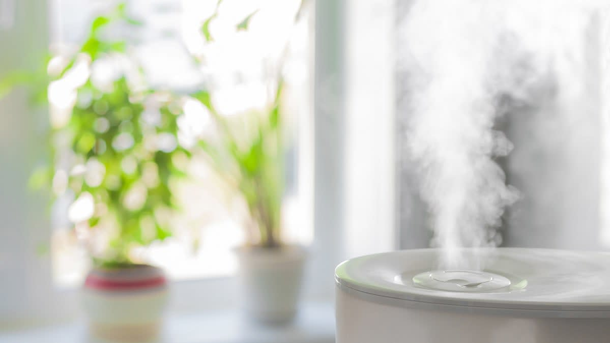 A humidifier emits moisture into a room.