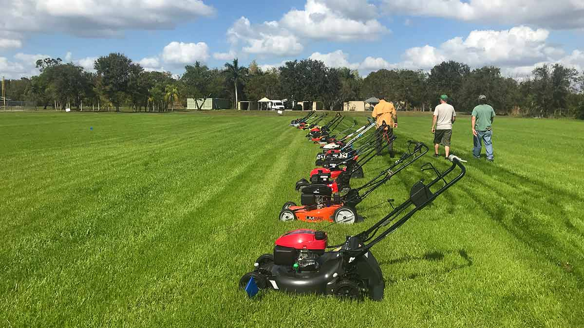 Consumer Reports testers walking next to a lineup of lawn mowers, including the best and worst walk-behind mowers