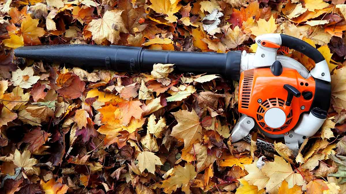 One of the best handheld leaf blowers in a pile of leaves.