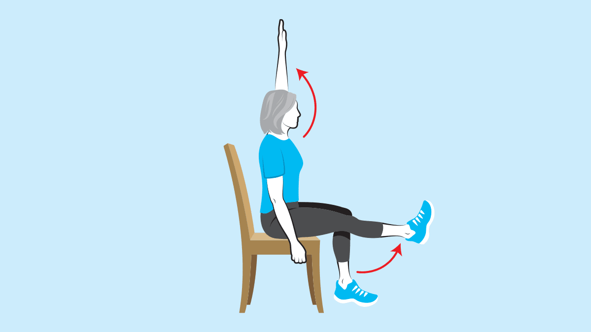 modified exercise seated arm and leg lift
