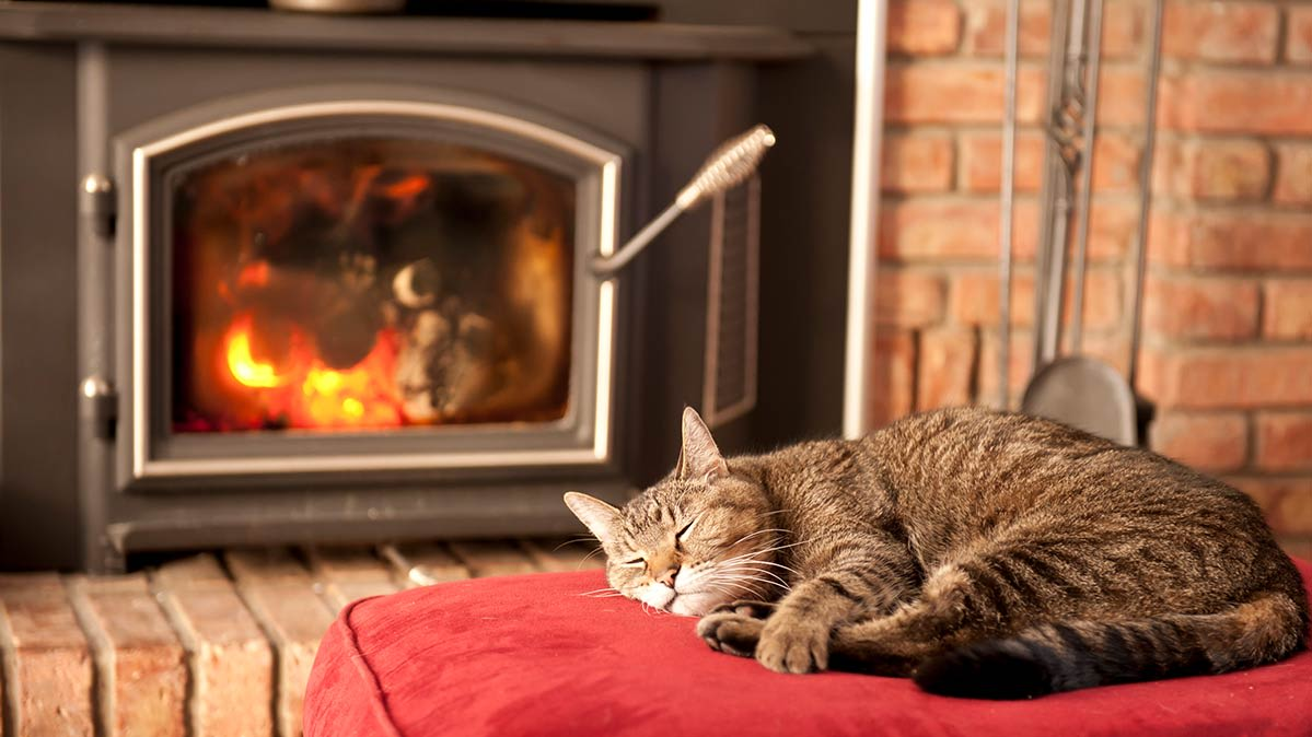 Tabby cat sleeping on a red blanket with a fired-up wood stove in the background
