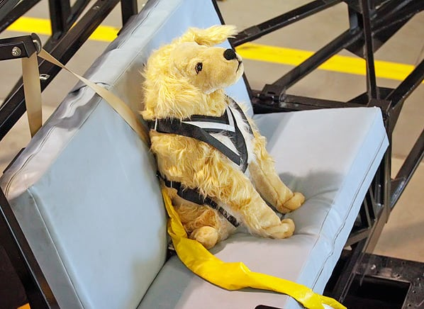 Dog Harnesses Pet Restraint Safety