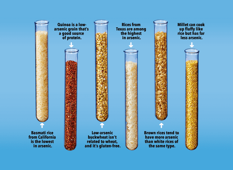 An image of test tubes with different kinds of rice and grains, each labeled with its specific advantages and disadvantages of possible lead contamination.
