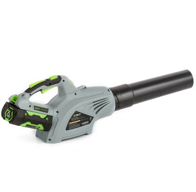 A cordless electric leaf blower.