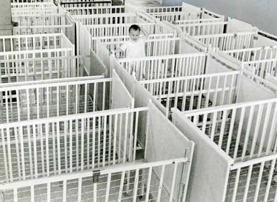 Cribs, 1971