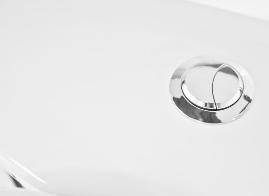Photo of a dual-flush-technology button.