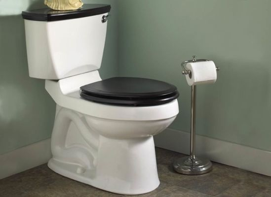 Photo of a toilet's trapways.