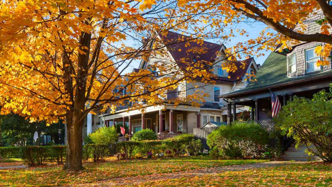 A row of suburban houses with a tree with fall leaves in front.