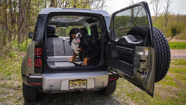 Land Rover Defender Cargo Area with Dog