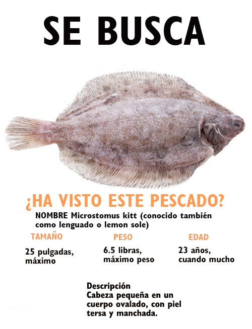 wanted fish