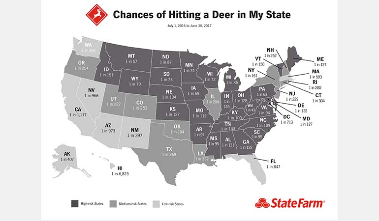 Chances of Hitting a Deer by State.