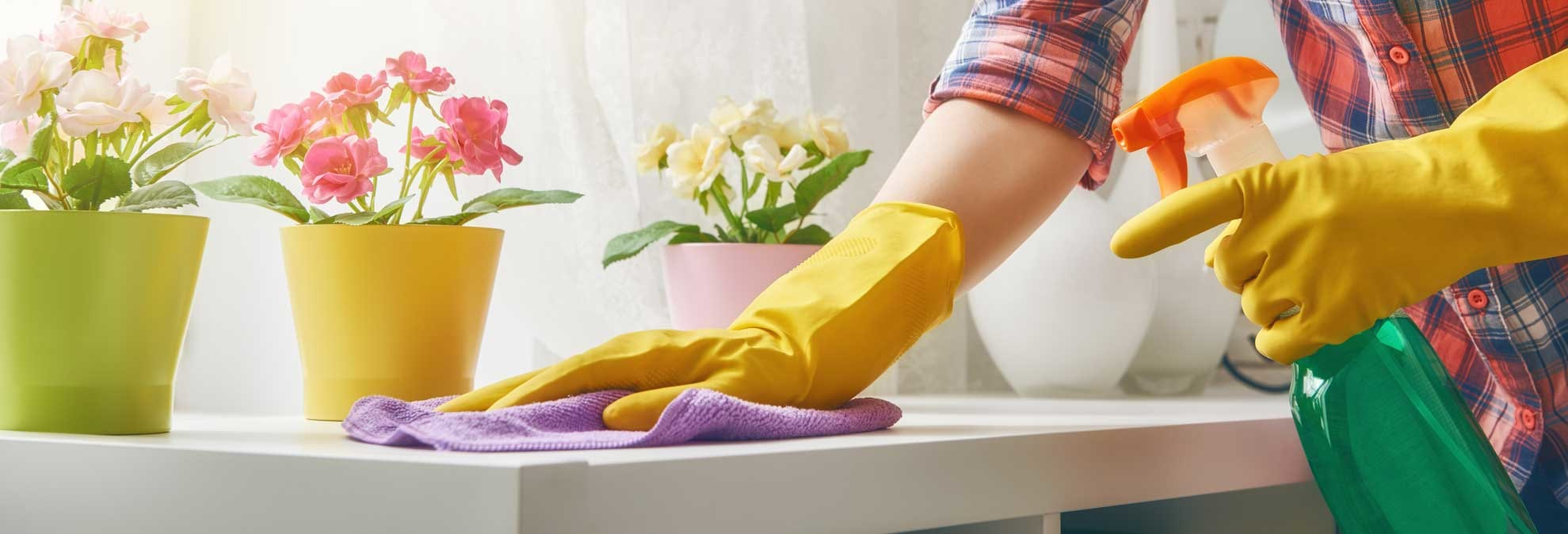 Simple Steps to a Healthy Home This Spring