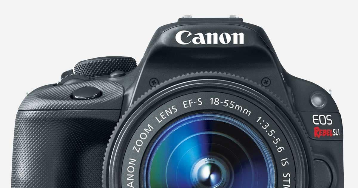 Best Digital Camera Reviews Consumer Reports