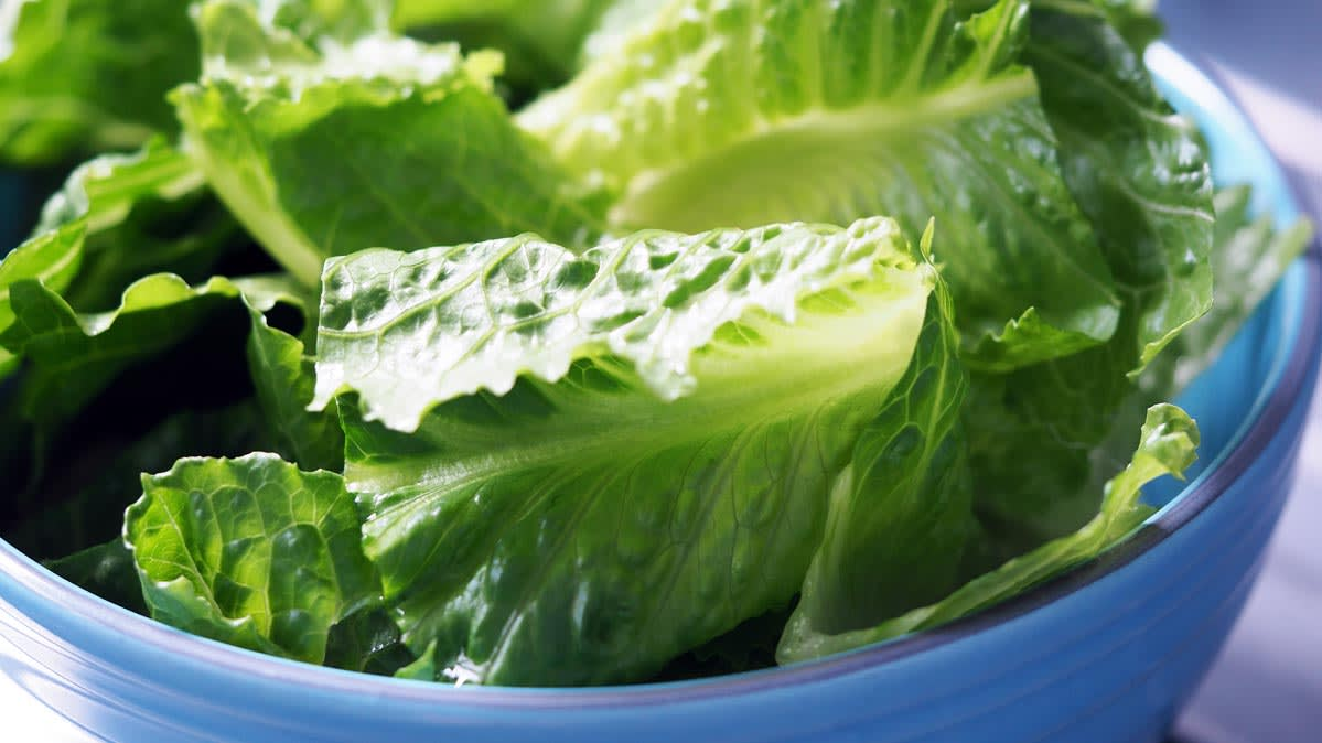 Stores Pulling Romaine Lettuce Off Shelves Amid E Coli