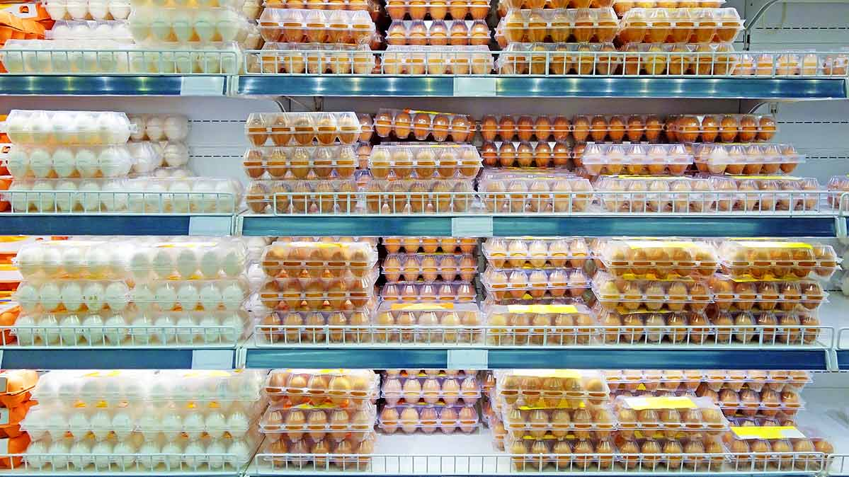 A supermarket shelf full of eggs. Eggs may contain salmonella.