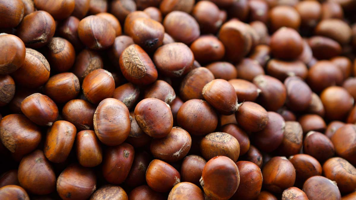 Are Roasted Chestnuts Good For You Consumer Reports