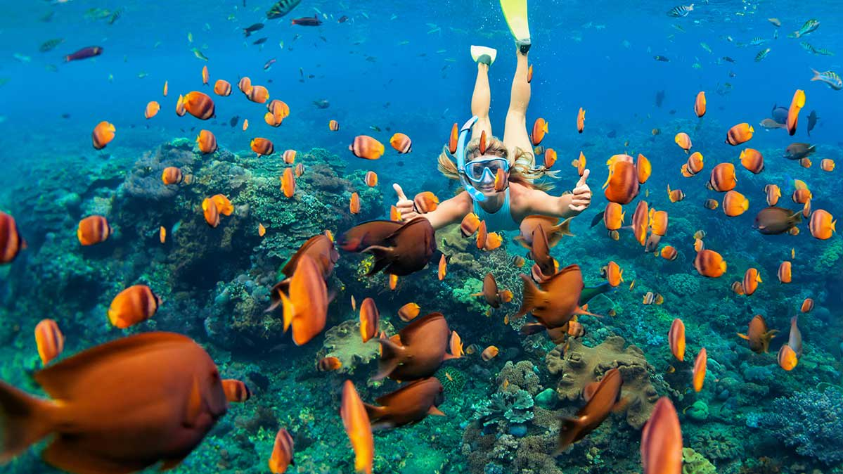 Woman swimming through a coral reef.