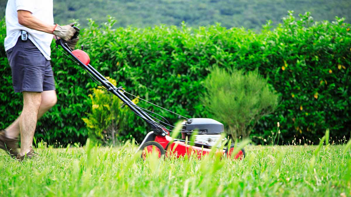 dc3fde66b255 A man cutting his grass with one of the best lawn mowers for small yards.