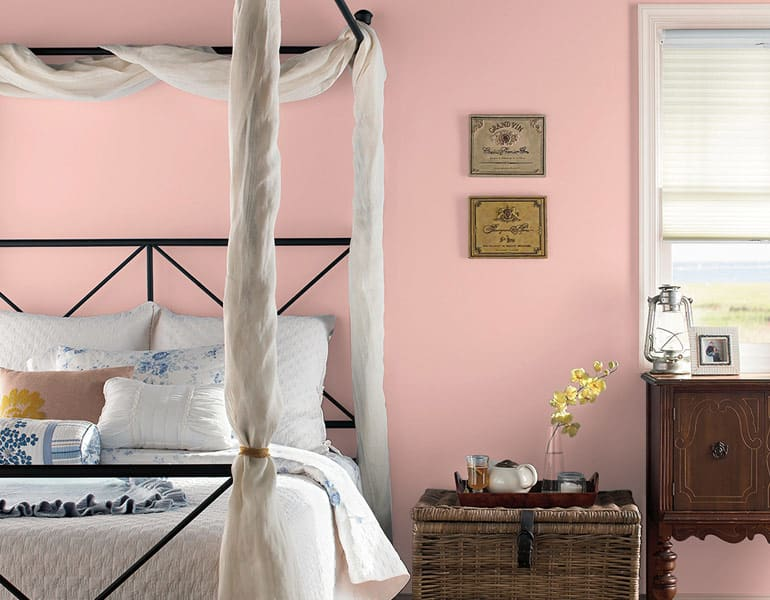Behr Positively Pink T18-01.