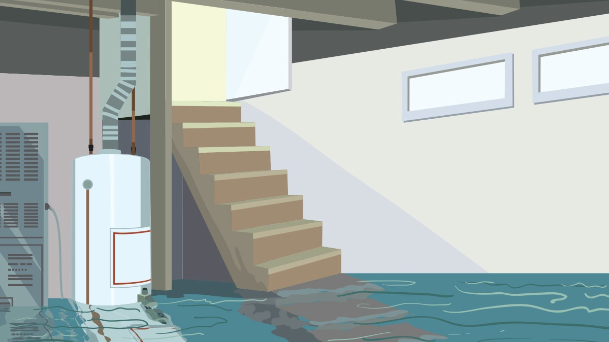 Flooded Basements Can Experience A Mold Outbreak.