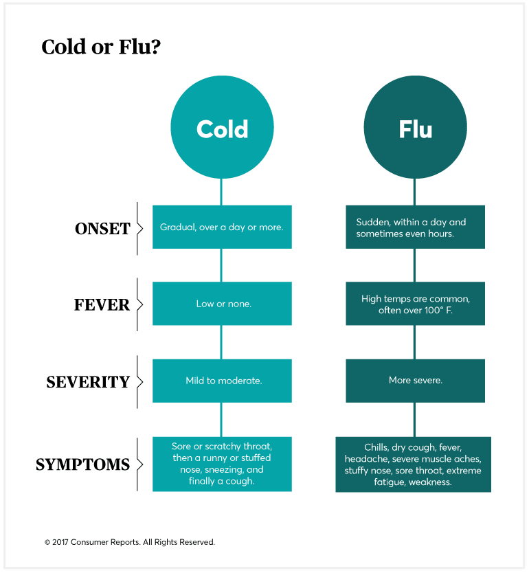 A day by day guide to treating a cold or the flu consumer reports