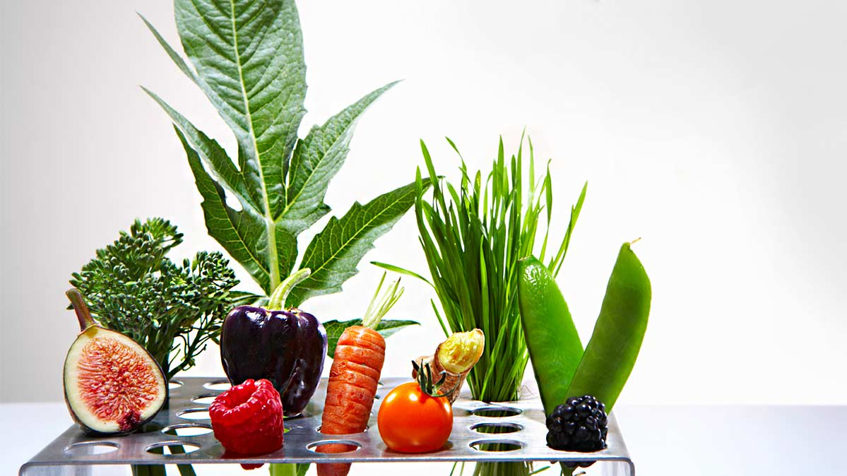 New Research Questions Heart-Healthy Diets