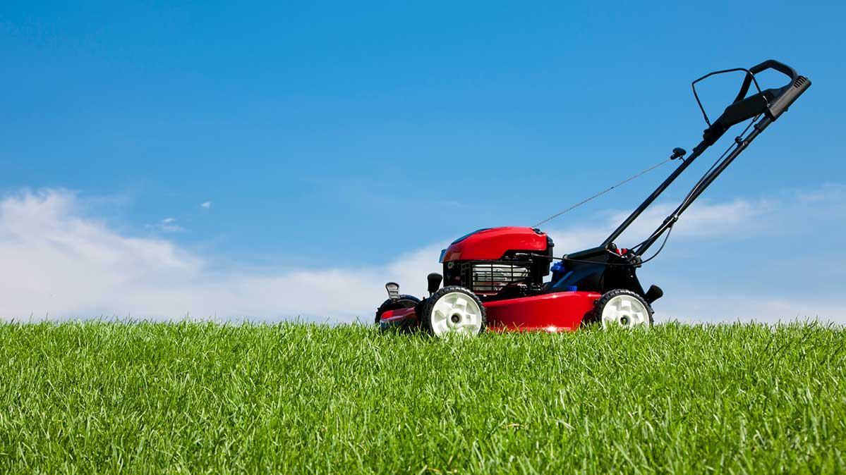 How to Mow Your Lawn in Hot Weather and Keep It Green