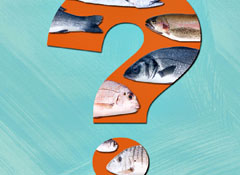 When To Buy Seafood