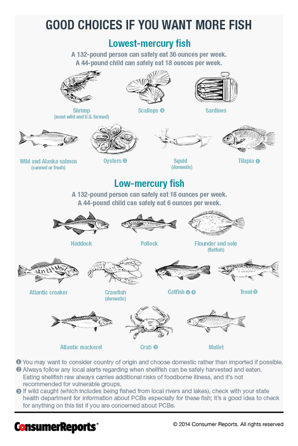 Low mercury and high mercury fishes consumer reports for Healthiest fish list