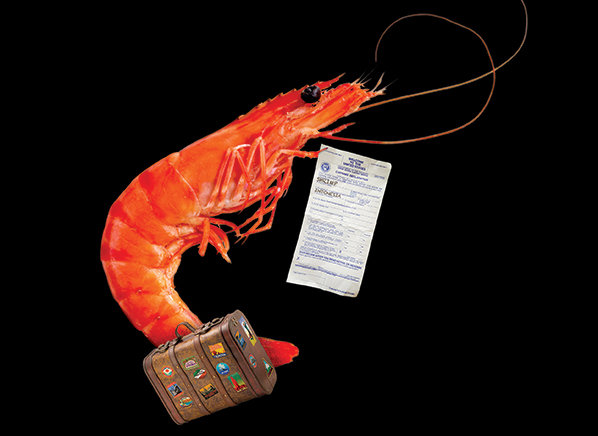how safe is your shrimp consumer reports