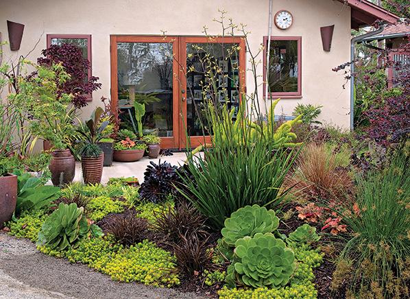 water smart garden