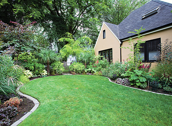 The Low-Impact But Still Lush Lawn | Lawn Care - Consumer Reports